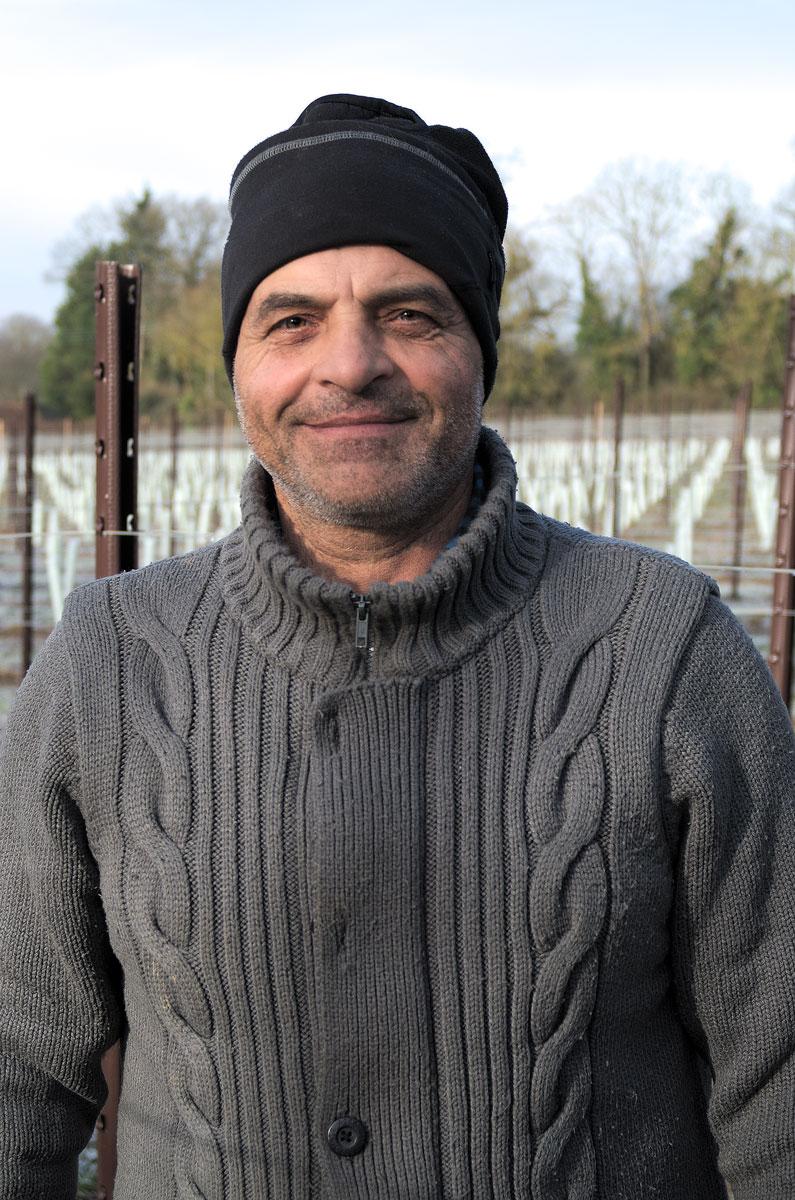 Kinsbrook Vineyards